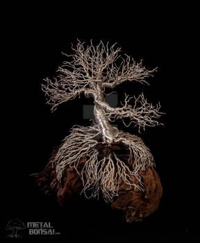 MG231- Metal Wire Bonsai Tree Sculpture-2
