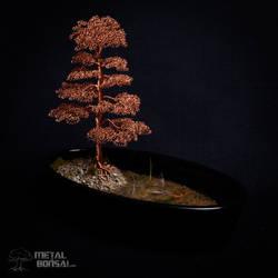 Wire Bonsai Tree Sculpture by Metal Bonsai  MG 309