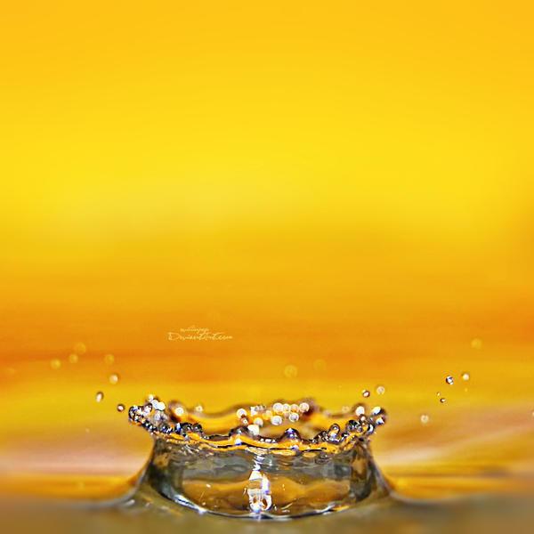 Water Drops 59 by ovidiupop