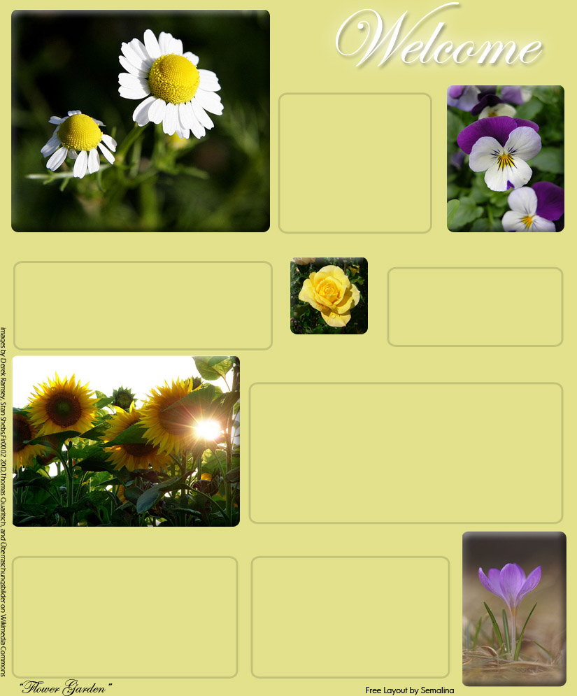 Free layout 7 flower garden by semalina on deviantart for Free flower garden designs and layouts