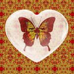 Fire Heart Butterfly
