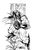 Wolverine. by JointForce
