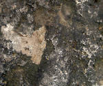 JJames Rock Texture 1