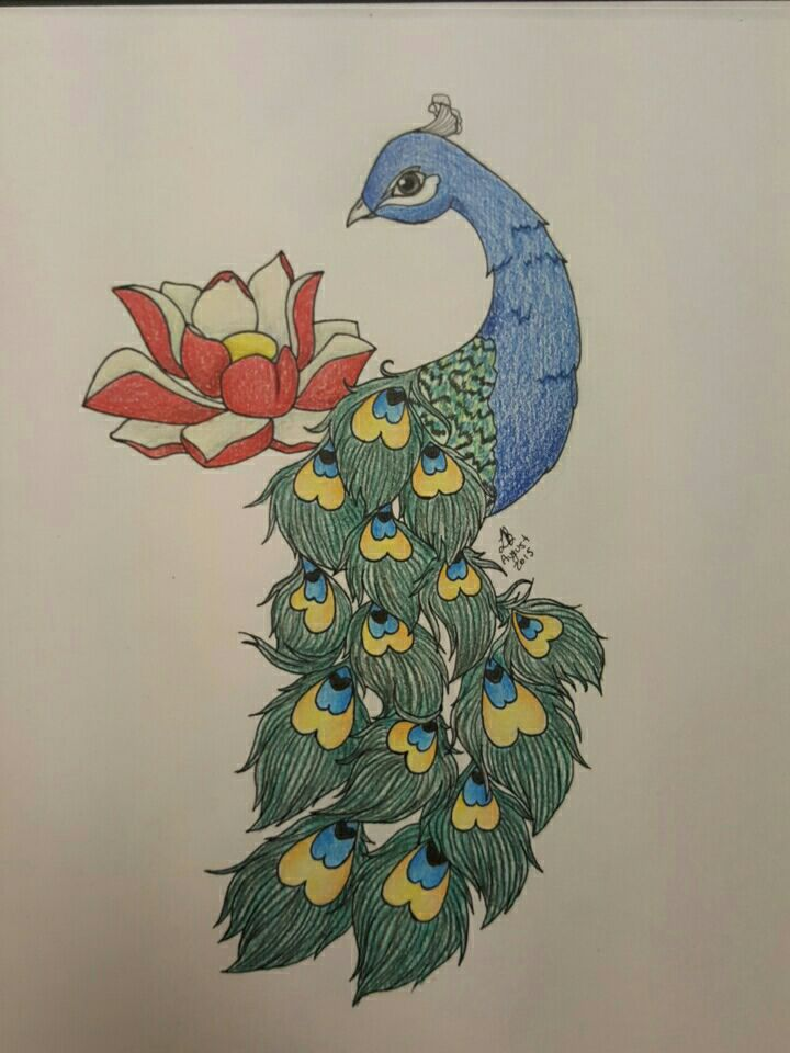 Peacock And Lotus Flower Tattoo Design By Lisakat98 On Deviantart