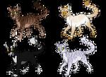 Cat Adopts 4 (2/4 OPEN)