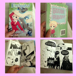 Enchanted Graphic Novel - Buy it Now! by kriscomics