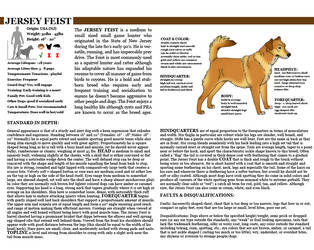 Breedsheets on Kennel-Club - DeviantArt