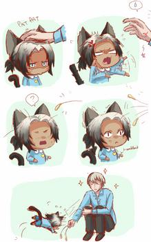 Mochi the kitty cat