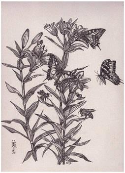 Lilies and butterflies, Inktober 14-2017