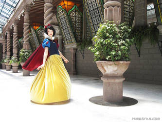 Someday My Prince will come by Riddle1