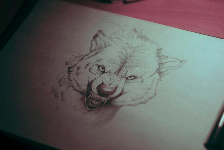WOLF by Kszesiu