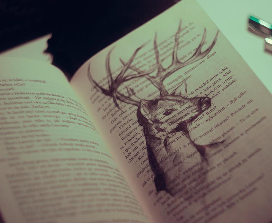 deer by Kszesiu