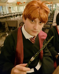 Ron Weasley - Its Time to Duel