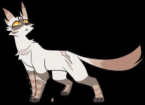 aopcat