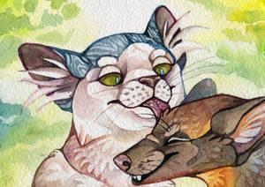 Cat and marten