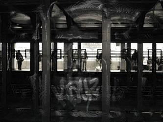 Silhouette Halls by KayZ-NZ
