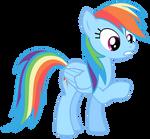 Rainbow Dash Vector - Um, Sorry...