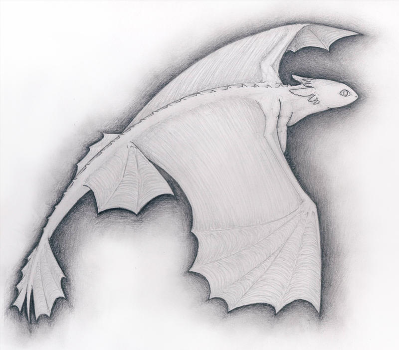 How To Train Your Dragon Night Fury Drawing 74662 Loadtve