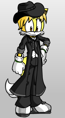 Sonic Doll Character: Myself by StarredPrower