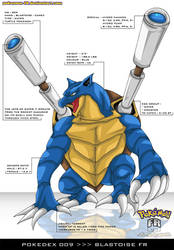 Pokedex 009 - Blastoise FR