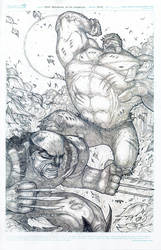 1st Apperance of the Wolverine by TaylorGarrity