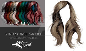 Clarice Hi Res Instant Hair STOCK PSD  x 10