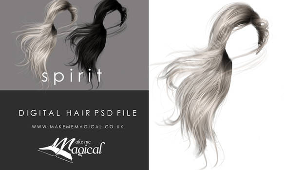 Spirit Painted Instant Hair STOCK PSD add on hair