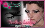 Feather Lashes - painted eyelash psd photoshop
