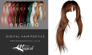 Evcinia Painted Instant Hair PSD add on hair stock