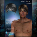 Male Hair 1 Painted hair Instant  PSD add on stock