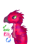 TKC Raptor