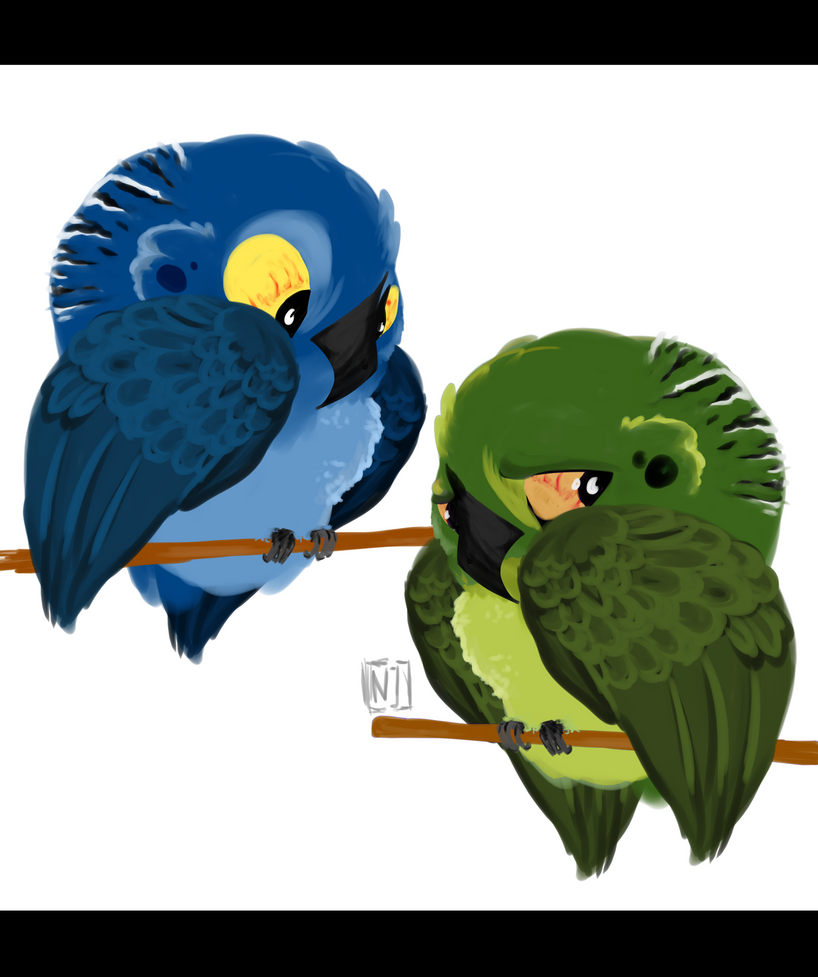 Budgies by ToxicKittyCat