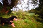 Run like hell by luka567