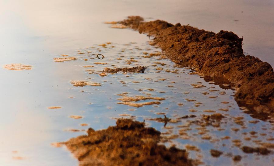 Mud bay by luka567