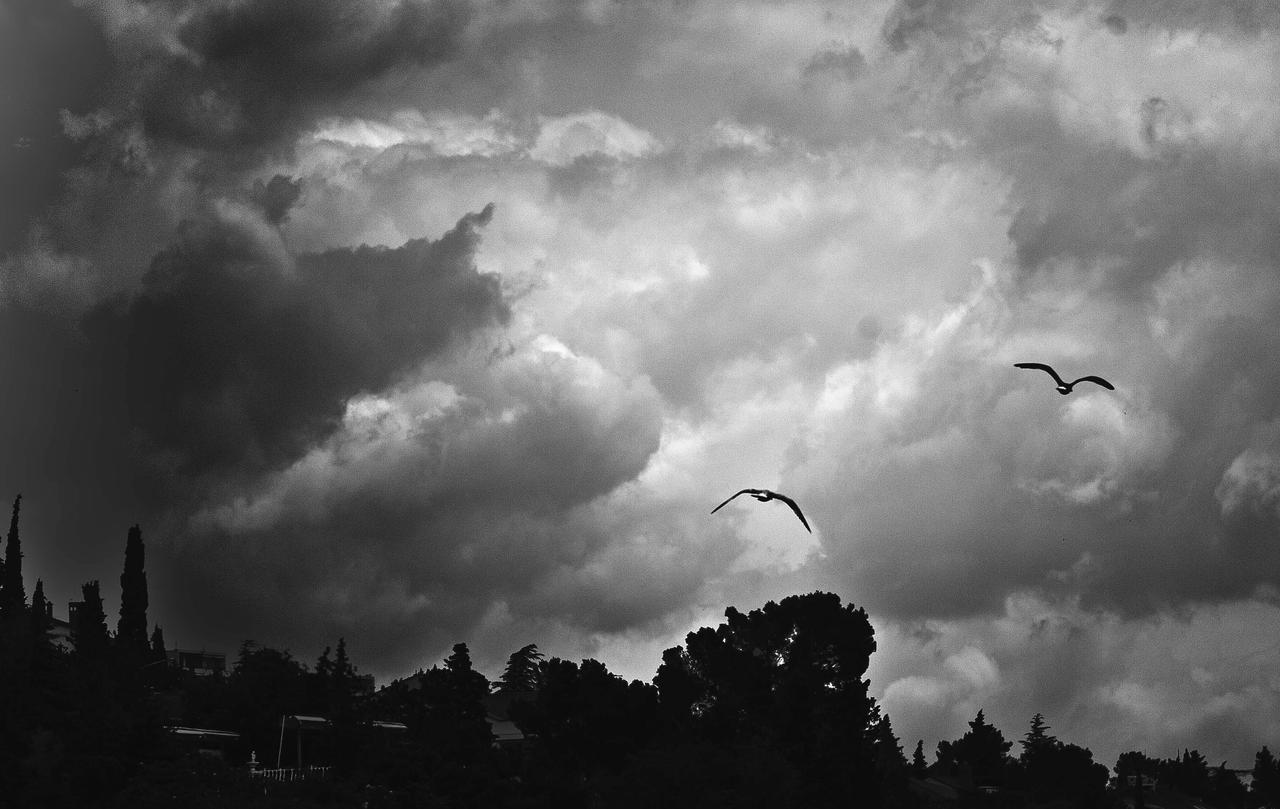 The sky by luka567