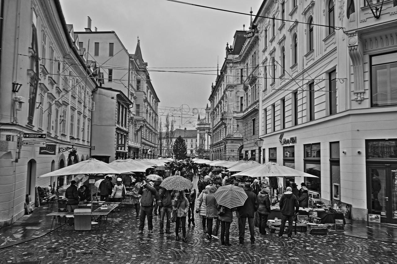 Sunday Fair in Ljubljana by luka567