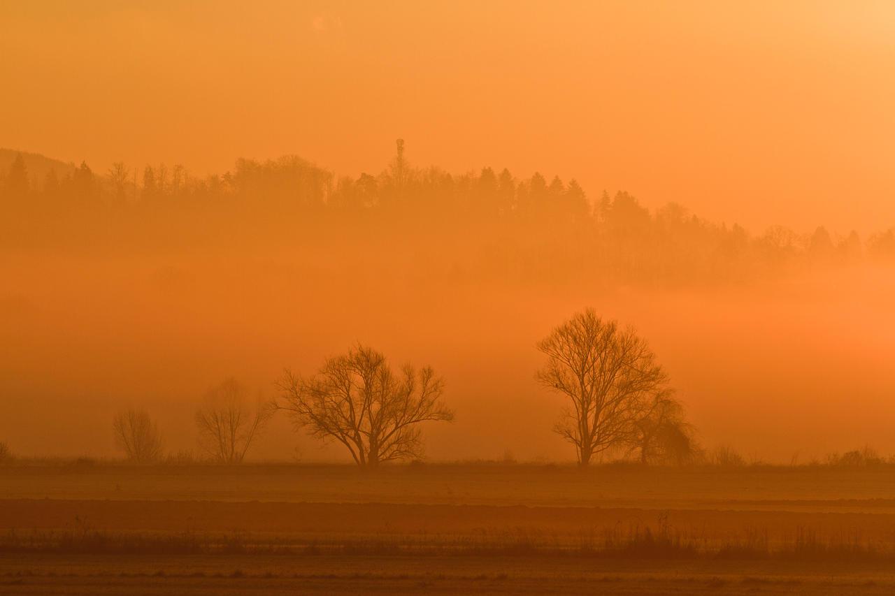 Morning light by luka567