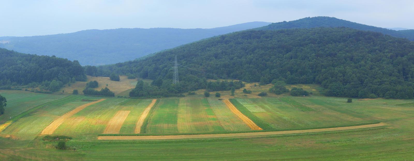 Croatian landscape by luka567