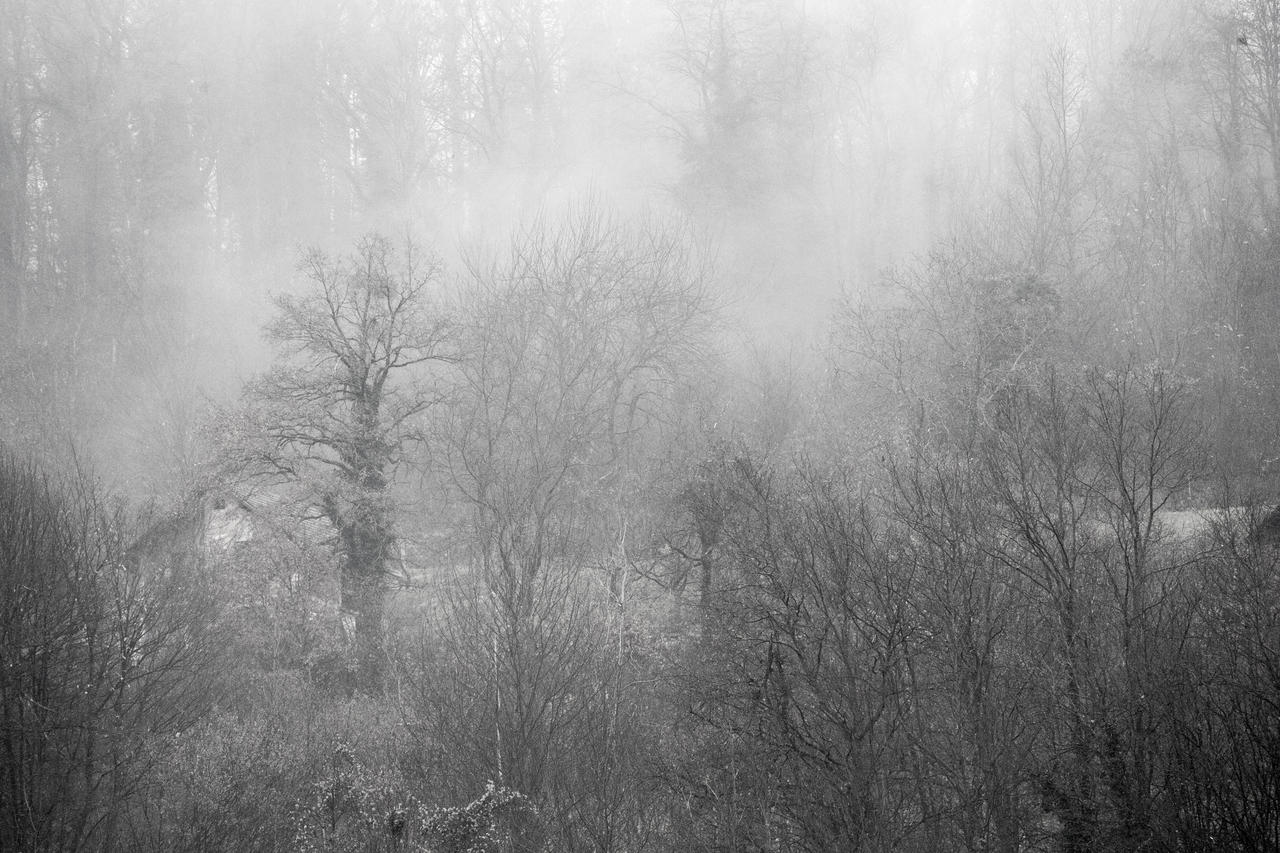 Winter by luka567