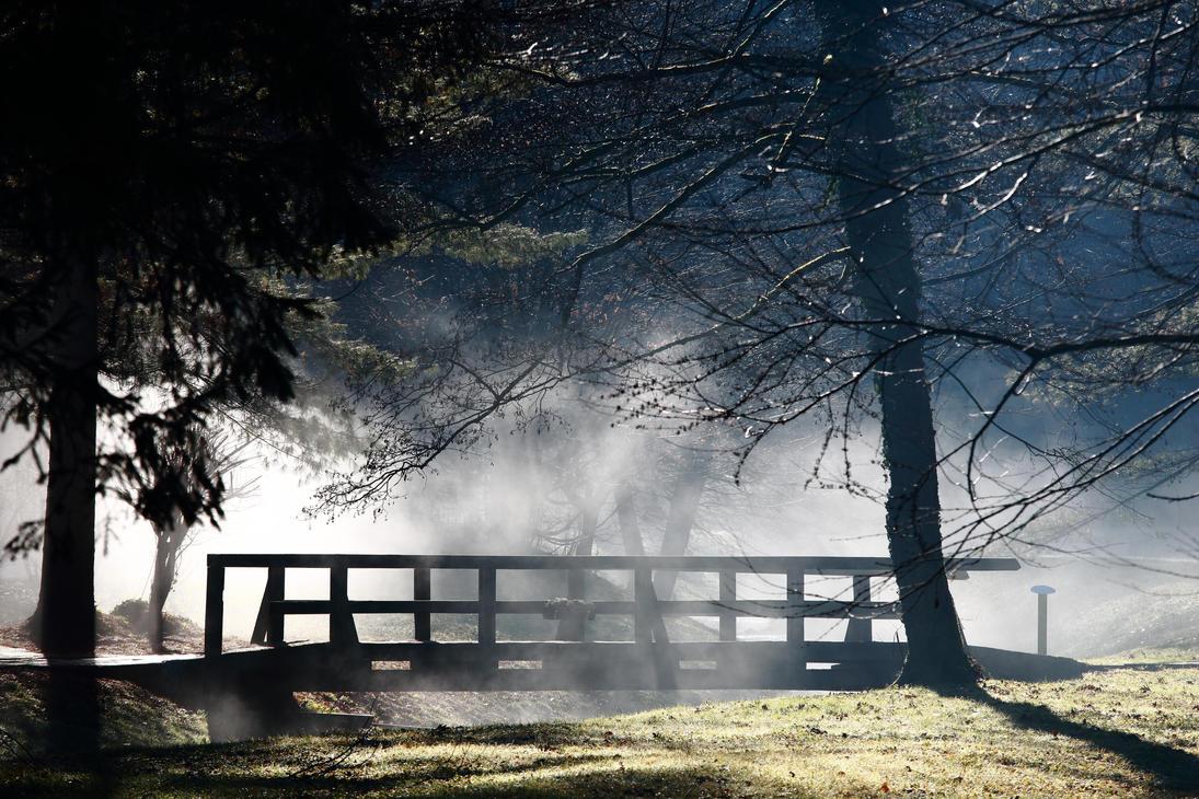 Foggy by luka567