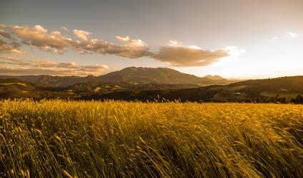 Slovenian Landscape (Koroska)