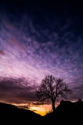Evening light by luka567