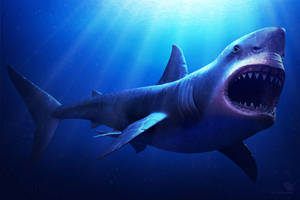 Carcharocles Megalodon by sash4all