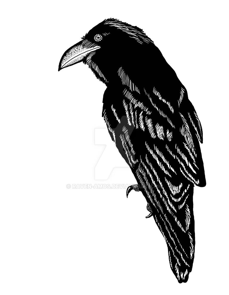 Raven Digital Linework by raven-amos
