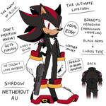 Shadow the Hedgehog [NETHEROUT AU]  Chaos Type  by Ami-Dark