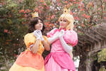 Sweet Princesses from Super Mario World