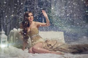 Winter beauty ver1 by DASTPHOTO