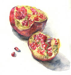 Watercolor sketch. Pomegranate by Last-Valentine