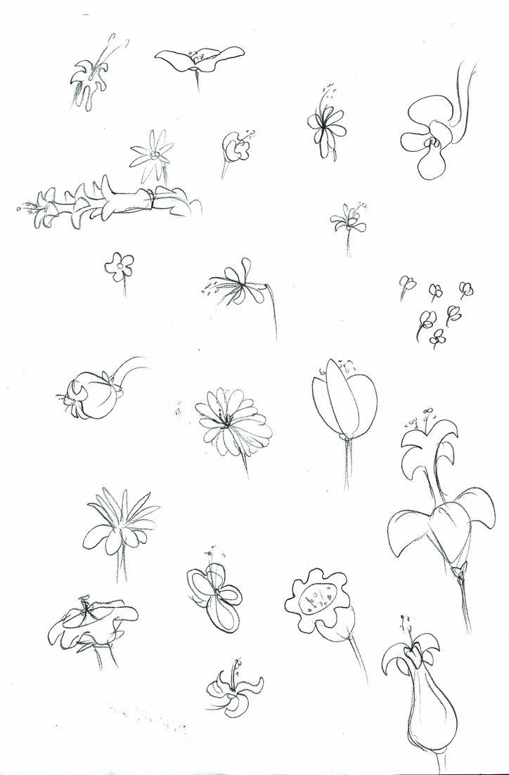 flowers by Saphytrix
