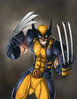 Wolverine by dubleosevn